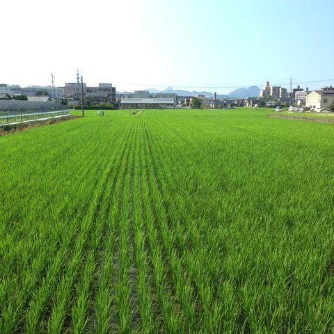 脱・都会依存。日本中自分の庭!移住を楽しもう。